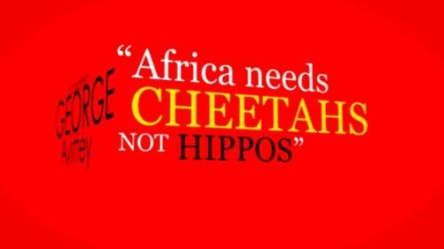 cheetah-code