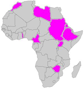 african jasmine revolution