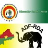Online resources for the 2012 Burkina Faso elections