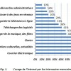 The use of the Internet in Morocco: measuring the second level digital divide